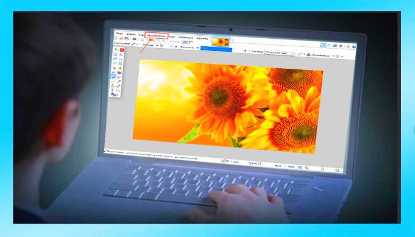 Простой гайд как уменьшить размер картинки в paint net без потери качества