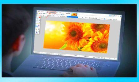 paint net изменить размер изображения