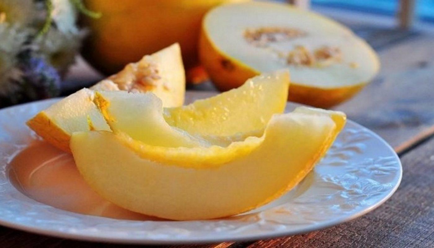 Дыня польза и вред для нашего организма. Дыня калории и богатый химический состав. Чем полезна дыня для здоровья и противопоказания
